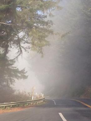 Misty Road